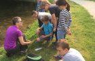 Poskusi na vodi – naravoslovni dan
